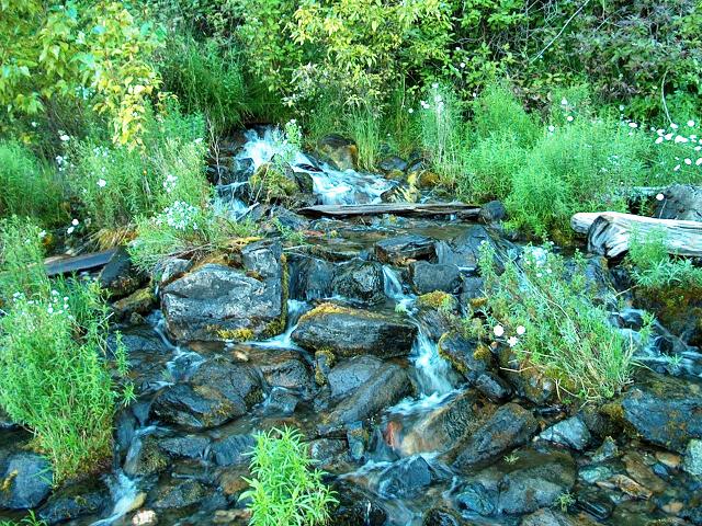 Wing Creek
