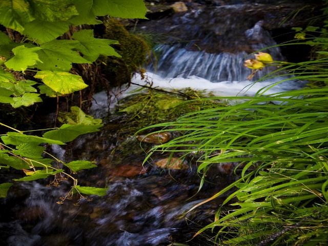 Wing Creek waterfall