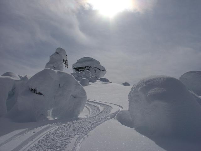 Mt. Buchanan